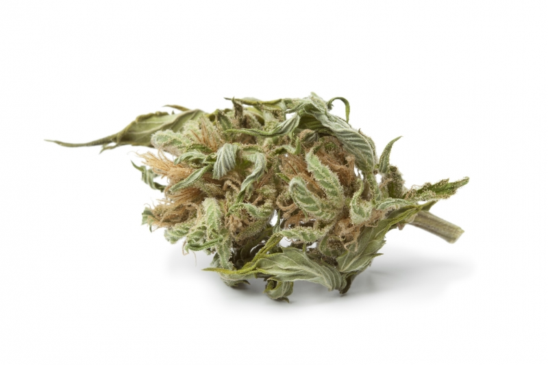 Cannabis Lebensmittelaroma Konzentrat