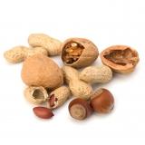 Nüsse Lebensmittelaroma Konzentrat