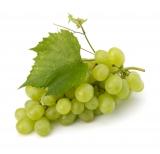 Weintraube Lebensmittelaroma Konzentrat